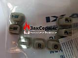 Кнопки управления Baxi Eco 4   - 5414010, фото 2