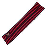 Ленточный эспандер для приседаний Zelart, полиэстер, эластан, р-р 12х60см, красный (BC-1828-60)
