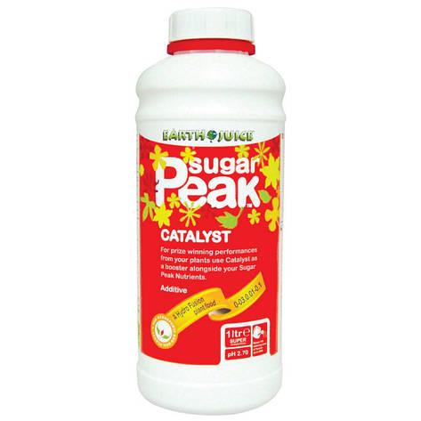 Стимулятор усилитель вкуса Sugar Peak Catalyst 1л, фото 2