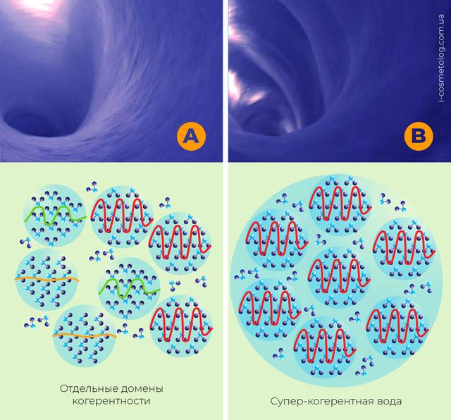 Сравнение обычной и супер-когерентной воды