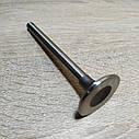 Клапан выпускной малый д.36мм УАЗ РАФ Волга 2401,Газель с/образца уменьш дв.402 1 шт (пр-во ЧАЗ,Челябинск), фото 2