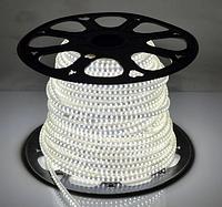 Светодиодная лента 120Led/m 2835 220В 4W/m AVT IP65 белый холодный