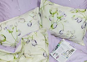 Viluta Комплект постельного белья ранфорс 19031, фото 2