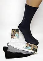 Чоловічі високі шкарпетки JuJube Бавовна. (Роздріб).