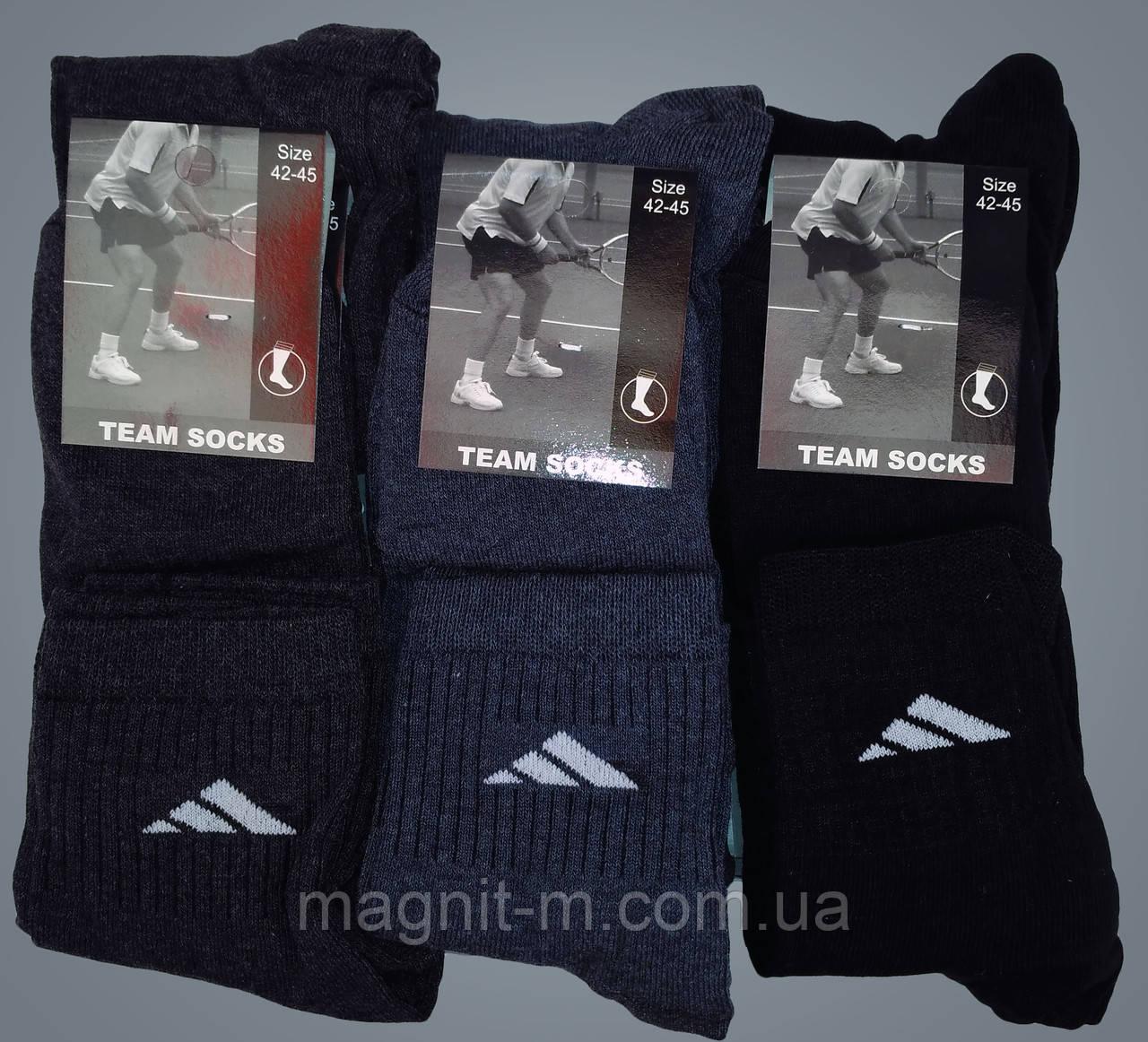 """Шкарпетки чоловічі """"Team Socks"""". Середньої висоти. Бавовна. Р-Р 42-45. (Роздріб)."""