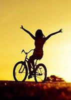 Види велосипедів та їх відмінності