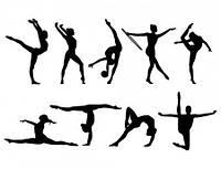 Снаряди для спортивної гімнастики