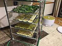 Сушилка для фруктов, овощей, грибов, рыбы, мяса Broody Akuma 450