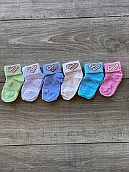 Шкарпетки для немовлят бавовна Eslayn для дівчаток і хлопчиків 0 років 12 шт в уп мікс із 6ти кольорів