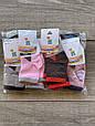 Дитячі шкарпетки Бембі бавовна для дівчаток і хлопчиків з мордочкою котика 1-2 роки 12 шт в уп мікс кольорів, фото 2