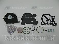 Ремкомплект редуктора Tomasetto Alaska RGTA2090 (АТ09)