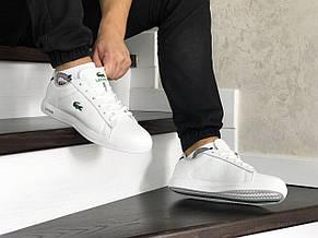Мужские кроссовки (в стиле) Lacoste,белые, фото 3