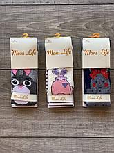 Колготи дитячі бавовна Moni Life з зайчиками для дівчаток 5,7,9,11 років 6 шт в уп мікс кольорів