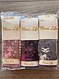 Дитячі колготи бавовна Moni Life з котиками для дівчаток 5,7,9,11 років 6 шт в уп мікс кольорів, фото 2