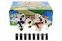 Іграшка на ключику Песики (коробка 12 шт.) 666 (шт.)