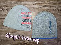 Шапка для мальчика Польская трикотажная Размер 50-54 см, фото 3