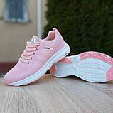 🔥 Женские кроссовки спортивные повседневные Adidas Neo pink адидас нео розовые, фото 9