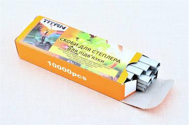 Скобы для садового степлера TITAN (10000 шт)