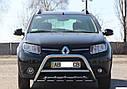 Кенгурятник с грилем (защита переднего бампера) Renault Sandero (Stepway) 2012+, фото 3