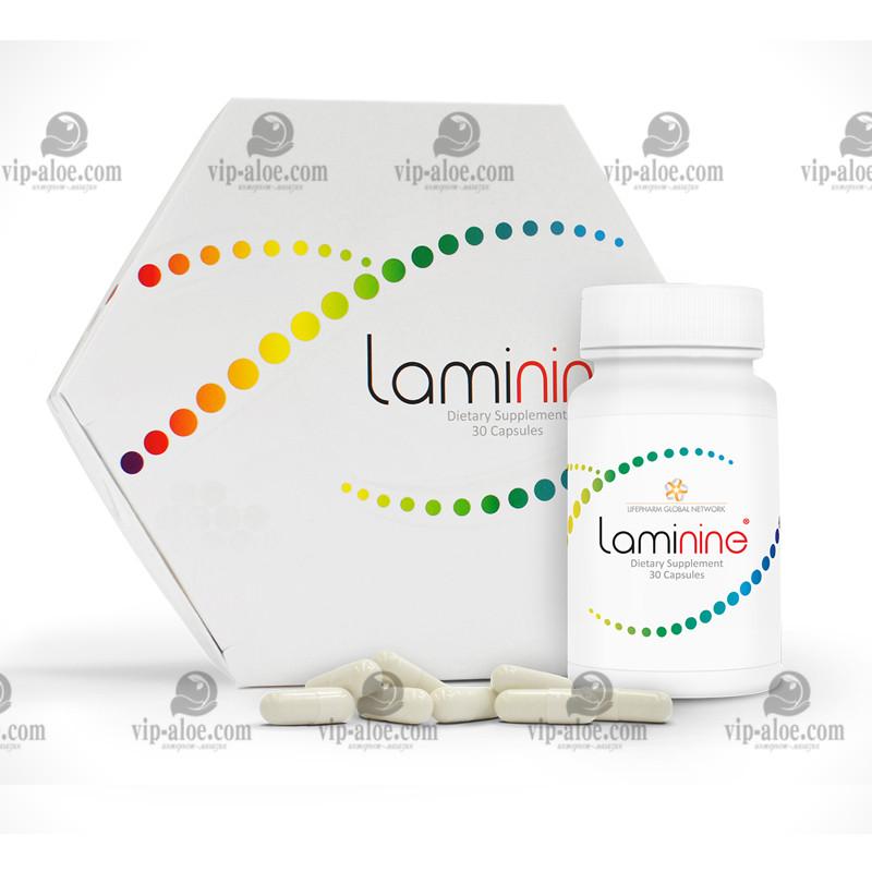 Ламинин (Laminine) - фактора роста фибробластов