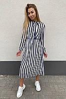 Элегантное платье миди в полоску Pintore - синий цвет, 46р (есть размеры), фото 1