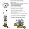 Лічильник води Maddalena DN 20 CD SD PLUS одноструменевий сухоход (антимагнит) для холодної води, фото 2