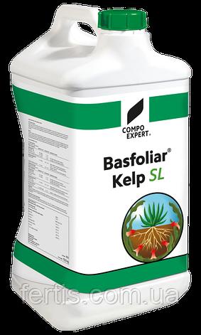 Добриво Басфоліар Келп СЛ, (Basfoliar Kelp SL) COMPO, 10 л., фото 2
