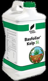Добриво Басфоліар Келп СЛ, (Basfoliar Kelp SL) COMPO, 10 л.