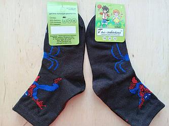 Носочки детские хлопковые  Червоноград  Спайдермен