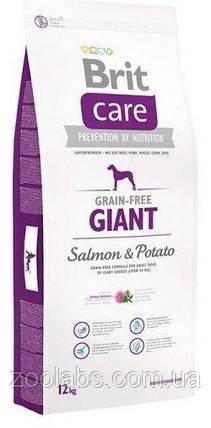 Корм Brit Care для собак весом от 45 кг   Brit Care Giant Salmon & Potato 12,0 кг, фото 2
