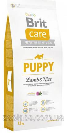 Корм Brit Care для цуценят з ягням | Brit Care Puppy Lamb & Rice 12,0 кг, фото 2