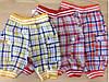 Детские шорты оптом 1-2-3 года