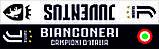 Шарф атласный FC Juventus, фото 3
