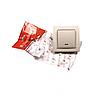 ElectroHouse Вимикач з підсвічуванням латте Enzo IP22