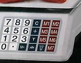 Весы торговые электронные Rainberg RB-310 до 55 кг со счетчиком цены, фото 2