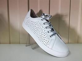 Стильные женские кожаные  белые кеды Bandinelli 4925