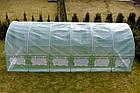 Теплица парник 24м² с окнами (800х300х200) для дачи, огорода, Польша, фото 2