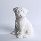 Декоративный Мопс керамика, декор для дома, Мопс, Белый (00630), фото 3