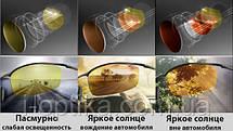 Поляризационные фотохромные линзы DRIVEWEAR, фото 3