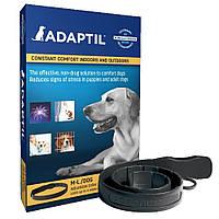 Ceva Adaptil ошейник для собак и щенков успокаивающий с феромонами - размер L
