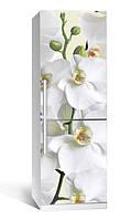 Виниловая наклейка на холодильник ReD Орхидея. 65х200 см