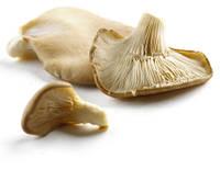 3 гриба, способные побороть любые болезни