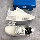 Стильные женские кроссовки Adidas NMD Runner, фото 8