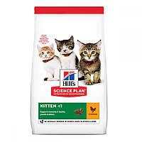 Hills Science Plan Kitten Chicken Сухий корм для кошенят з куркою / 7 кг, фото 1
