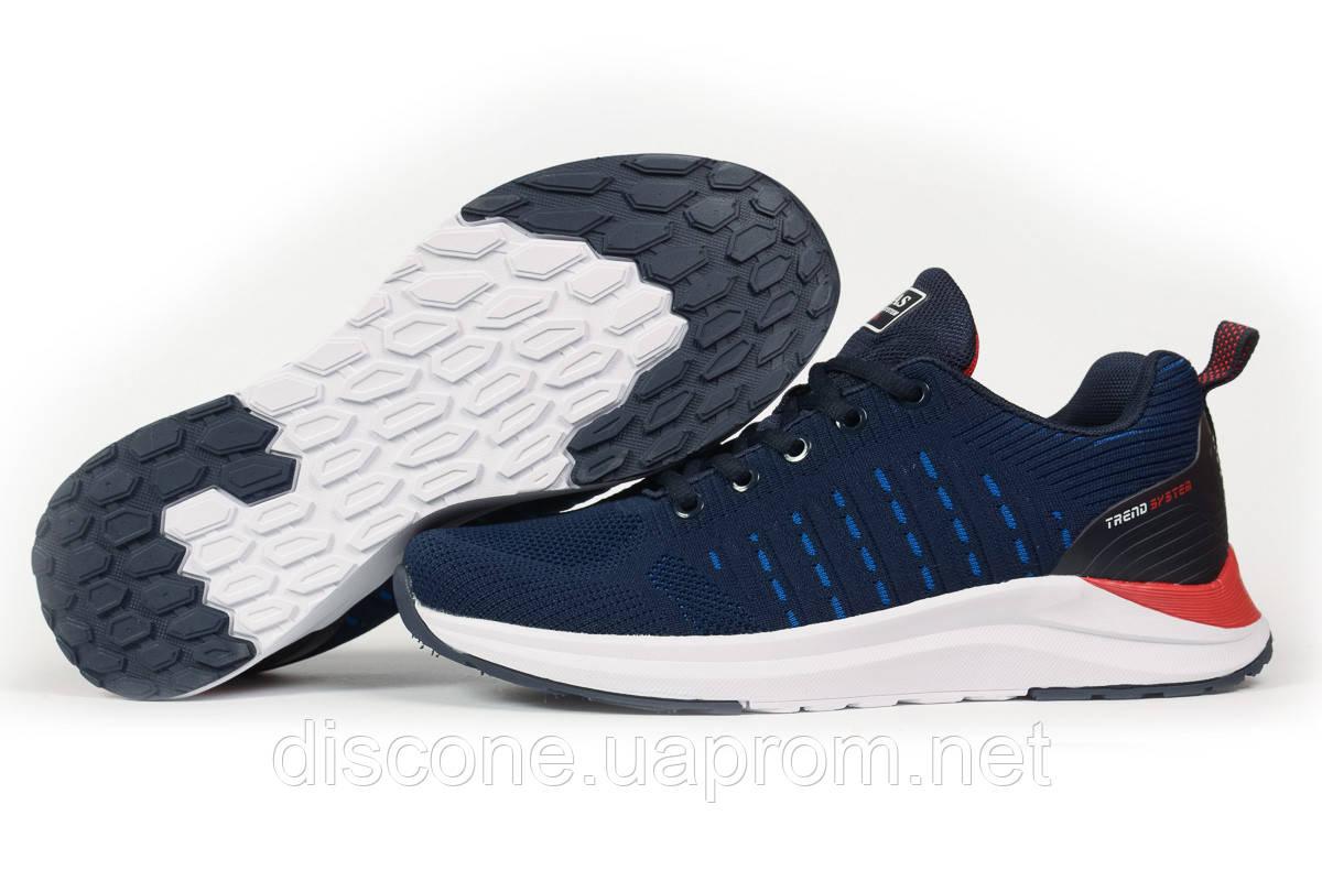 Кроссовки мужские 10343 ► BaaS Ploa Running, темно-синие ✅Скидка 33% [ 43 44 45 ] ► (43-27,2см)