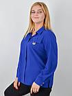 Блузка классическая большого размера Петра электрик, фото 3