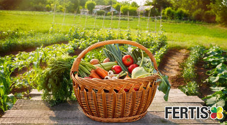 Добрива для овочів
