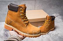 Зимние женские ботинки 30661, Timberland 6 Premium Boot, рыжие, < 36 37 39 40 > р. 36-24,0см., фото 2