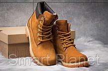 Зимние женские ботинки 30661, Timberland 6 Premium Boot, рыжие, < 36 37 39 40 > р. 36-24,0см., фото 3