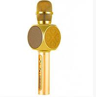 Караоке-микрофон портативный Y-63 7051, золотой, фото 1